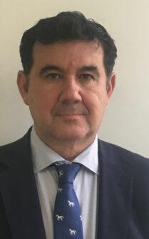 Entrevista a Gonzalo Casillas, director comercial de Eurofrits